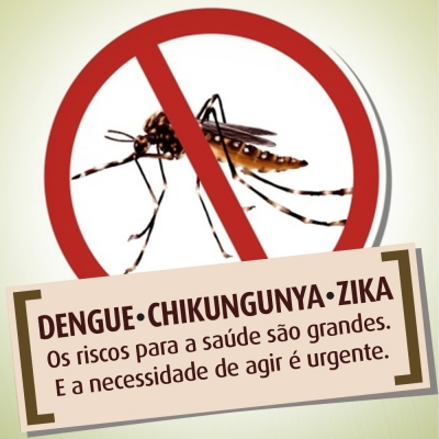 Combate Contra o Mosquito Aedes Aegypti